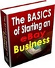 Thumbnail The Basics of Starting an eBay Business
