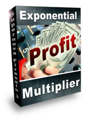 Product picture Exponential Profit Multiplier traffic generating system