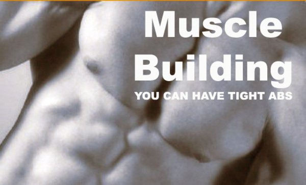 Product picture Muscle and Body Building Fitness Ebook